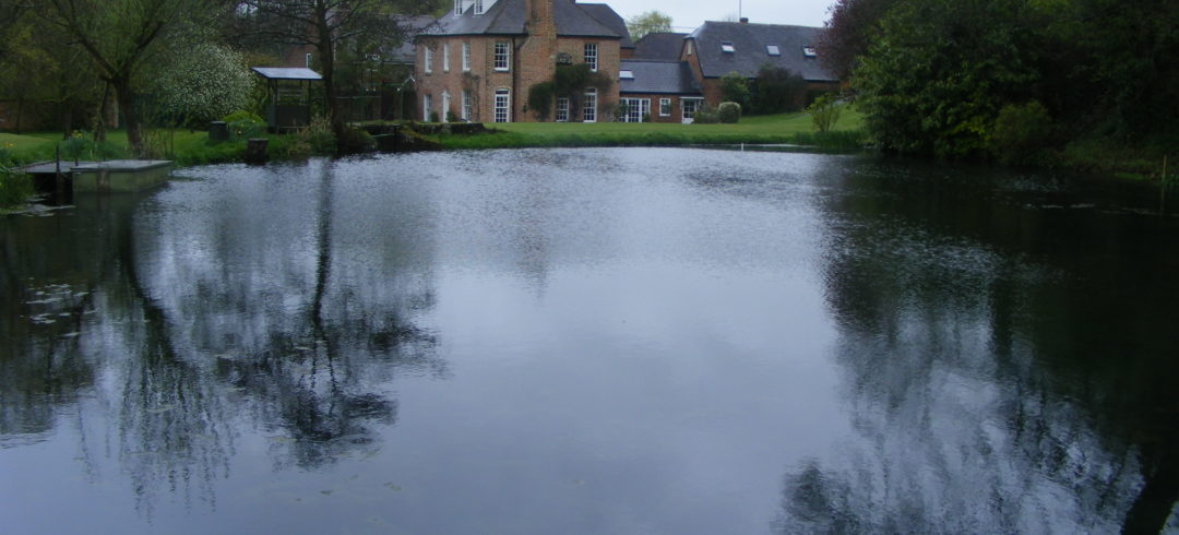 Lake and Pond Desilting