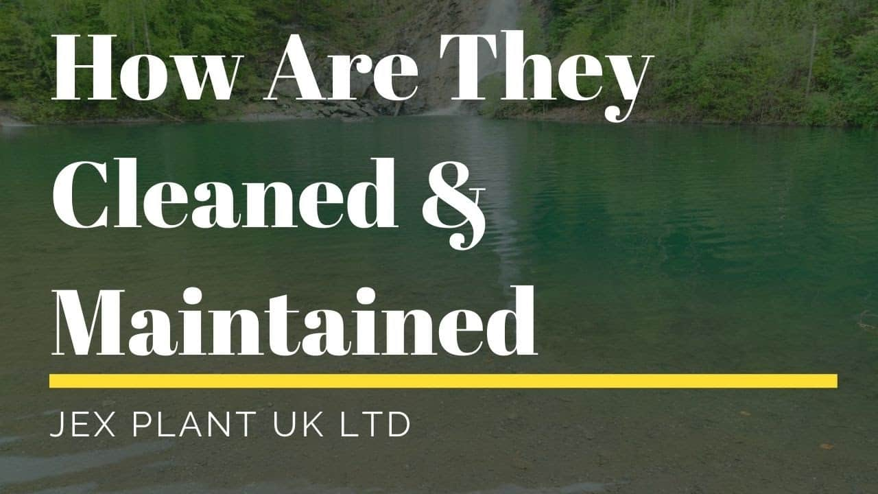 How Are Natural Swimming Ponds cleaned and maintained in the UK_